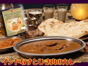 インドなすとひき肉のカレー170g(本格インドカレー)(ご当地カレー・無添加レトルトカレー)
