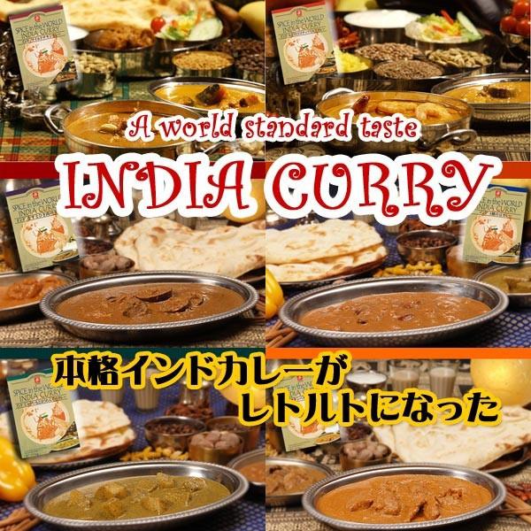 ご当地カレー インドカレー 6種類12食 お試しセット(キャニオンスパイス)