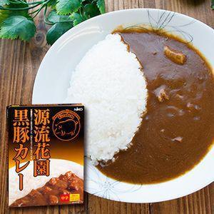 レトルトカレー 埼玉 源流花園黒豚カレー 中辛(1人前 200g)×2箱