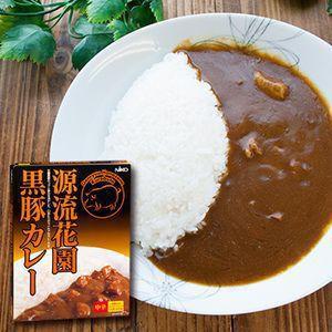 レトルトカレー 埼玉 源流花園黒豚カレー 中辛(1人前 200g)×4箱