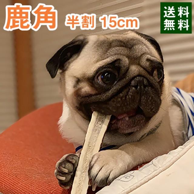 鹿の角 犬 おもちゃ 15cm 縦割り 中型犬 無添加 おやつ エゾジカ 国産 鹿 角 ガム デンタルケア monolife