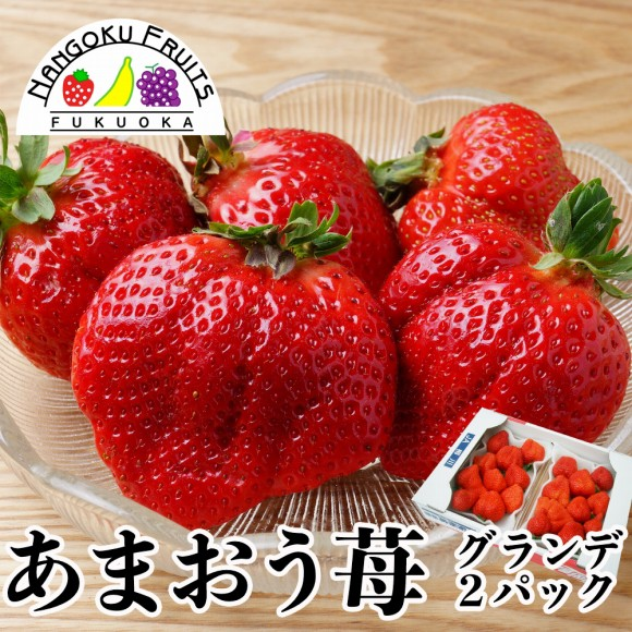 南国フルーツ・福岡産あまおう苺・グランデ2パック