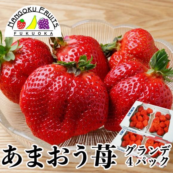 南国フルーツ・福岡産あまおう苺・グランデ4パック