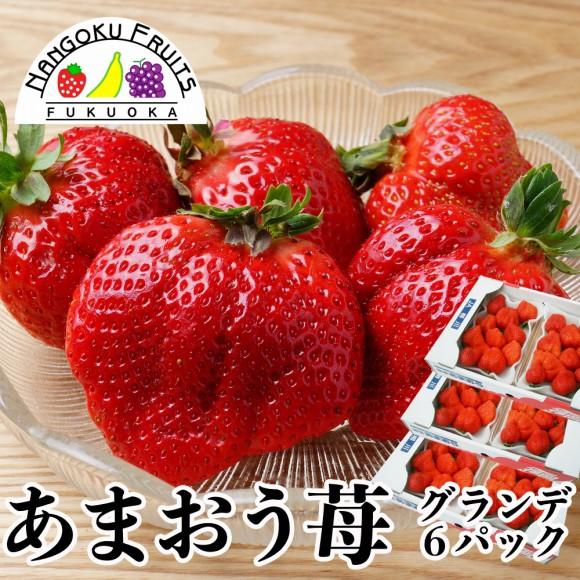 南国フルーツ・福岡産あまおう苺・グランデ6パック