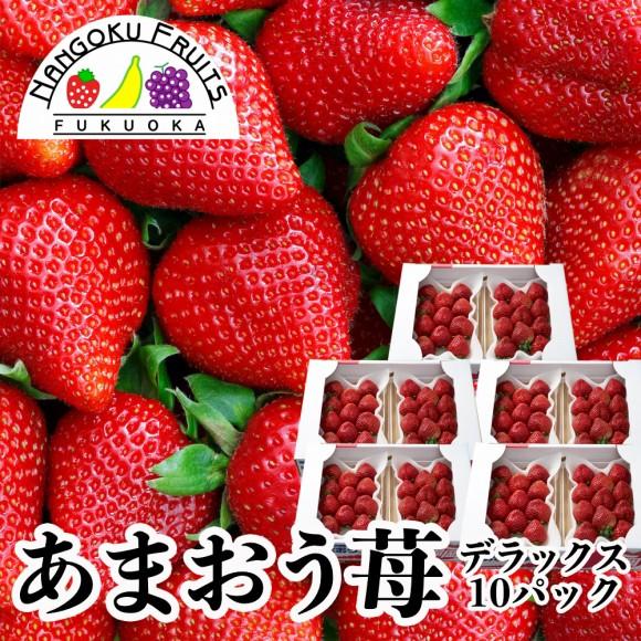 南国フルーツ・福岡産あまおう苺・デラックス10パック