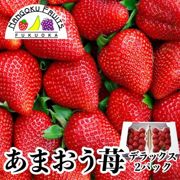 南国フルーツ・福岡産あまおう苺 デラックス2パック