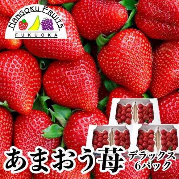 南国フルーツ・福岡産あまおう苺・デラックス6パック