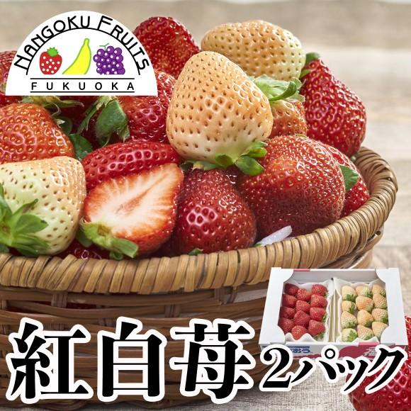 南国フルーツ・福岡産紅白いちご(あまおう&白いちご) 2パック