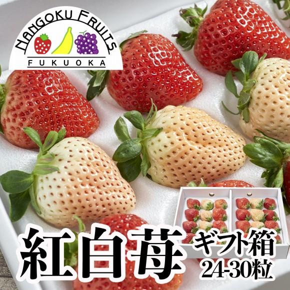 南国フルーツ・福岡産紅白いちごギフト箱(24〜30粒)