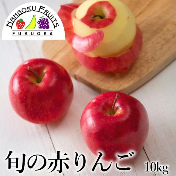 南国フルーツ・旬の赤りんご 約10kg(36〜40玉)