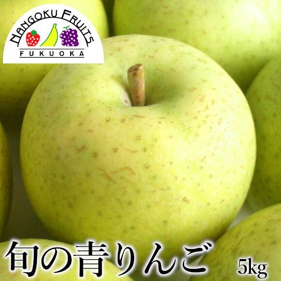 南国フルーツ・旬の青りんご 約5kg(18〜20玉)