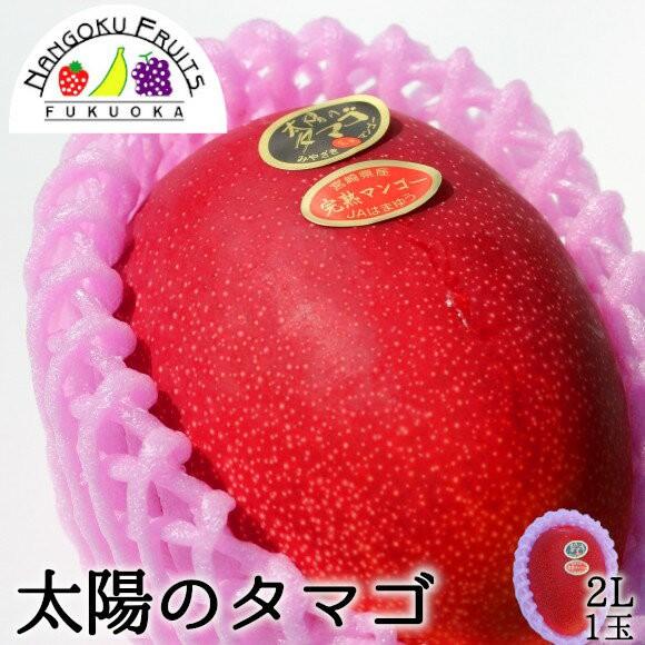 南国フルーツ 宮崎産完熟マンゴー・太陽のタマゴ2L1玉