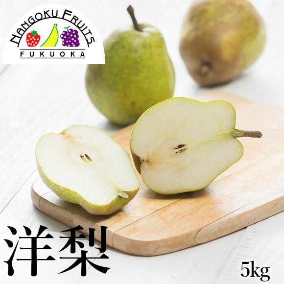 洋梨5kg(16〜20玉)