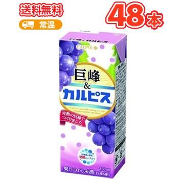 エルビー 巨峰 カルピス ぶどう 【250ml】×24本/2ケース 〔乳酸菌飲料 ブドウ〕