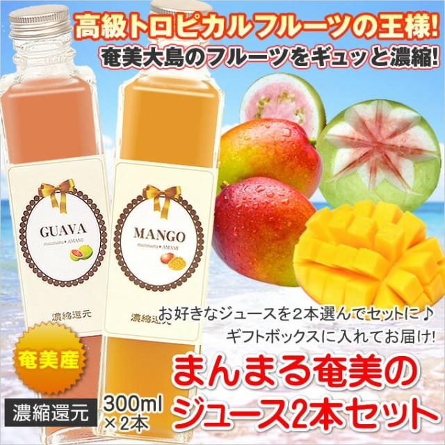 まんまる奄美 ジュース300ml×2本 マンゴー パッションフルーツ グアバ たんかん すもも