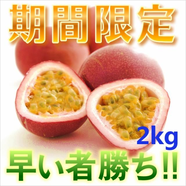 訳ありパッションフルーツ2kg 時計草 奄美大島 送料無料