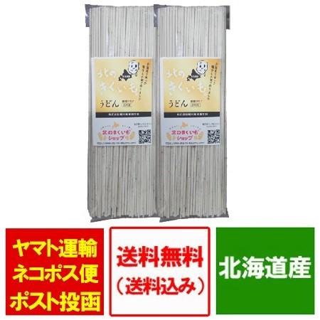 うどん 乾麺 送料無料 菊芋 パウダー 使用 北海道産 きくいも うどん 細麺 200g ×2袋 価格 1380円 饂飩 きくいも 菊芋うどん