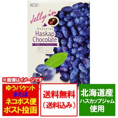 チョコレート ギフト 送料無料 北海道 ハスカップ チョコレート 価格 1000 円 ポッキリ 送料無料 チョコ 北海道産 ハスカップ ジャム 使