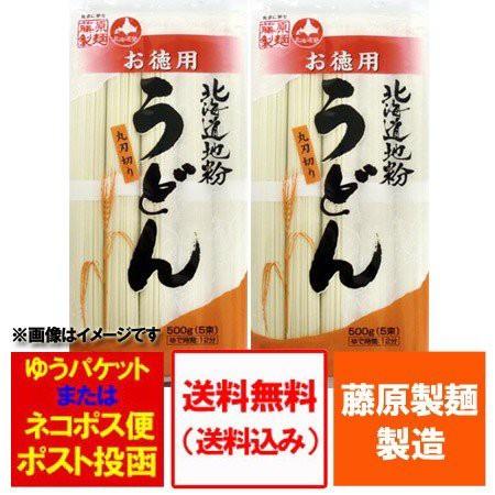北海道 麺セット 送料無料 乾麺 北海道産地粉を使用した乾麺 北海道 うどん500 g(5束)×2袋 価格 690円