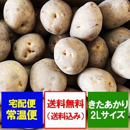 きたあかり 送料無料 北あかり 北海道産 じゃがいも きたあかり 10kg 2Lサイズ 価格3000円 北海道 ジャガイモ キタアカリ