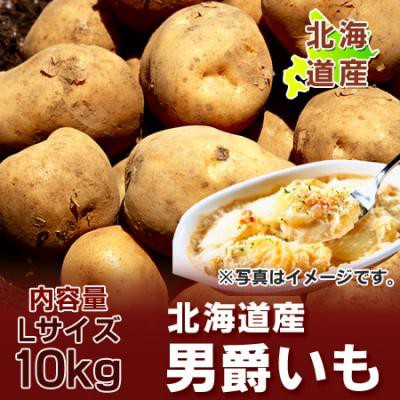 北海道 じゃがいも 送料無料 男爵いも 北海道産 男爵いも 10kg Lサイズ 価格 4320円 だんしゃくいも