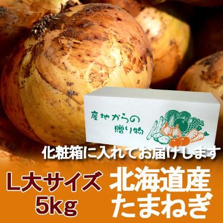 玉ねぎ 北海道 たまねぎ 送料無料 野菜 北海道産 玉ねぎ 5kg(L大 サイズ) 玉葱 箱 1ケース 価格 1980円 たまねぎ 化粧箱入