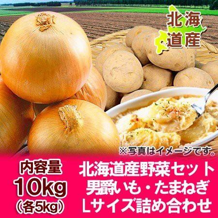 野菜セット 北海道産 じゃがいも 男爵いも・玉ねぎ 10kg(各5kg)Lサイズ 価格 3580円 野菜 セット 送料無料 だんしゃくいも・たまねぎ