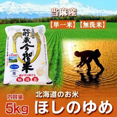 北海道産米 送料無料 無洗米 令和元年 産 米 北海道米 ほしのゆめ お米 無洗米 5kg(5キロ) (当麻米) 「無洗米 送料無料 白米」価格 3260