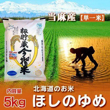 北海道産米 送料無料 白米 令和元年 産 米 北海道米 ほしのゆめ お米 5kg(5キロ) (当麻米) 「送料無料 白米」価格 3150 円