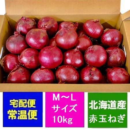 玉葱 北海道産 赤玉ねぎ 送料無料 赤い たまねぎ アーリーレッド M〜Lサイズ 10kg 玉葱 1箱(1ケース) 価格3501円 むらさき 赤 玉ねぎ 赤