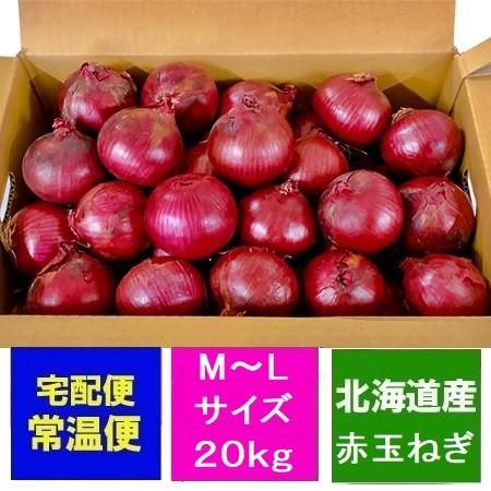 玉ねぎ 送料無料 北海道 たまねぎ 10kg×2箱(2ケース)(アーリーレッド) M〜Lサイズ 玉葱 価格5580円 赤い 玉ねぎ タマネギ 紫
