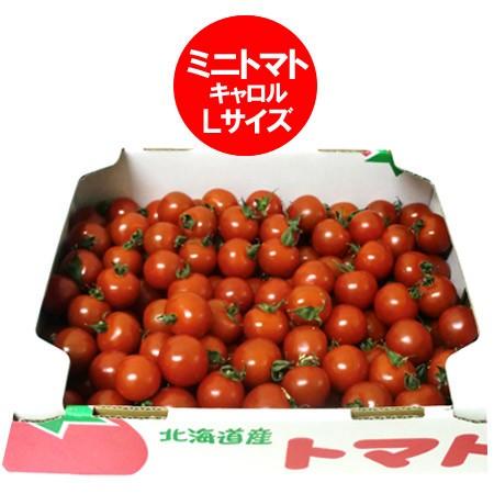 ミニ トマト 送料無料 トマト 北海道 ミニ トマト Lサイズ 4kg(4キロ) 価格 5555円