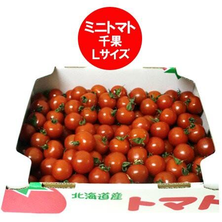 ミニトマト 送料無料 北海道 ミニトマト Lサイズ 2kg(2キロ) 価格 3240円 トマト/とまと
