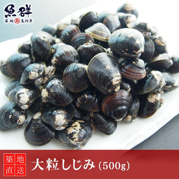 大粒しじみ 500g(国産) 冷蔵便 築地直送 [貝]