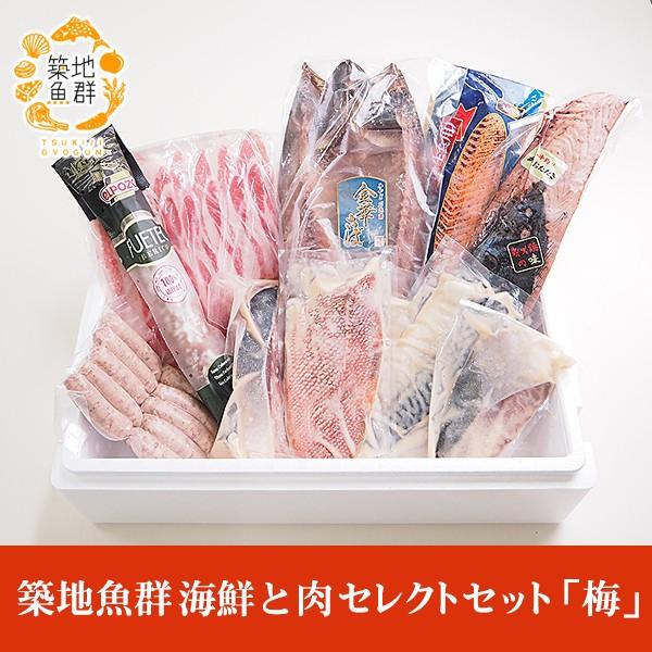 築地魚群 海鮮と肉セレクトセット「梅」 冷凍便