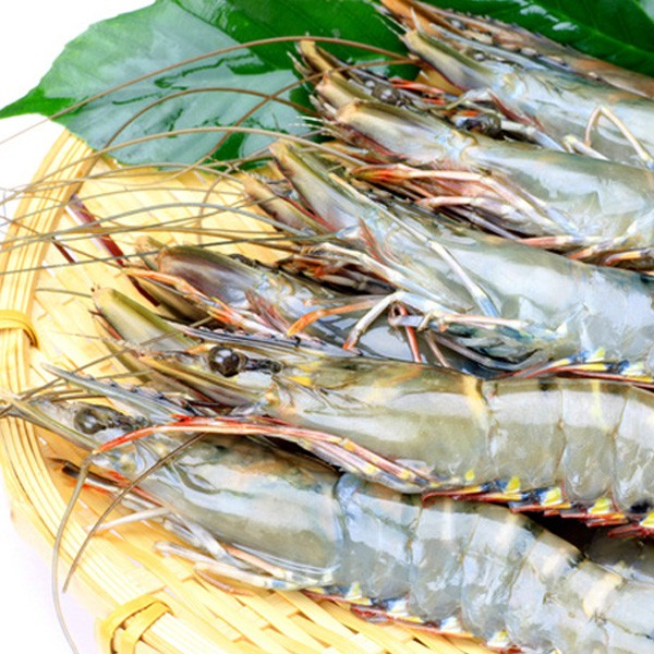 ブラックタイガーエビ有頭(特大サイズ)15尾 冷凍便 築地直送 [えび]