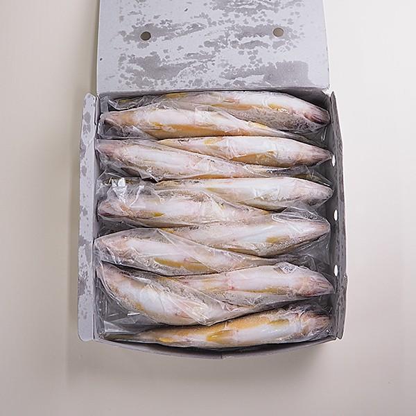 鮎1kg 冷凍便 冷凍便 [鮎 ハーブ鮎]