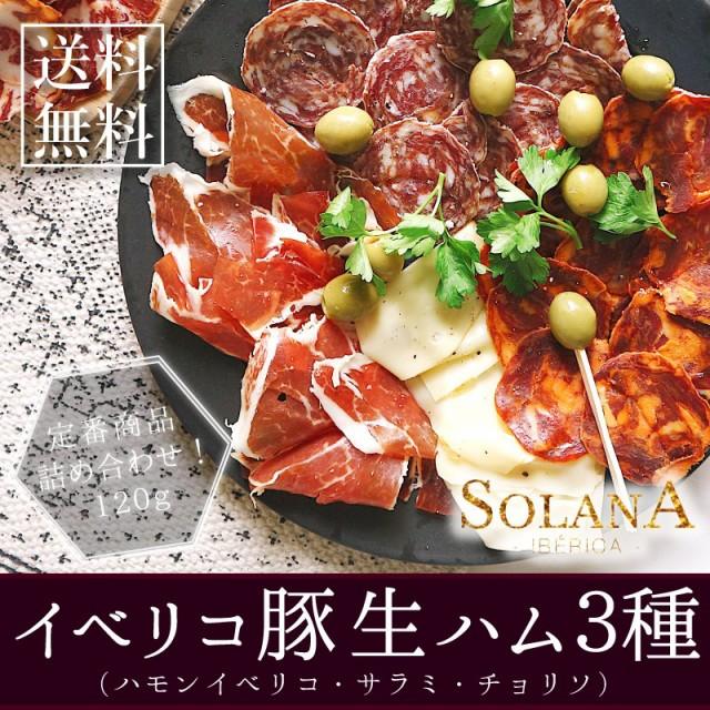 ポイント消化 オードブル『スペイン産24ヶ月熟成ハモンイベリコ 生サラミ3種セット 140g』 送料無料 生ハム 食品 肉 お試し