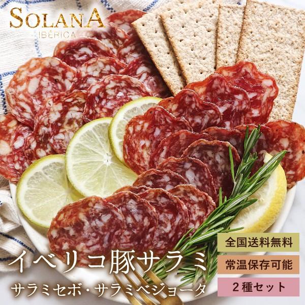 復興 ポイント消化 送料無料 おつまみ 『スペイン産 濃厚イベリコ豚サラミ&あっさりサラミ』ぽっきり お試し
