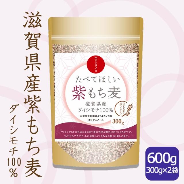 たべてほしい紫もち麦 大麦 ダイシモチ 300g×2袋 送料無料 ※北海道・沖縄は+900円送料