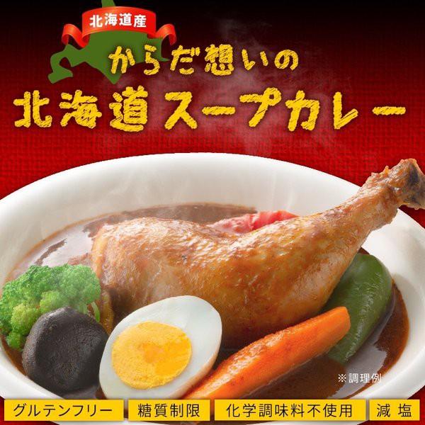 スープカレー レトルト からだ想いの北海道スープカレー 2食(300g×2) 送料無料 グルテンフリー 糖質オフ 食品