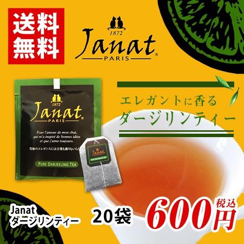 Janat ジャンナッツ ダージリンティー 20袋 ポイント消化 バラ売り 送料無料 お試し 紅茶 ティーバッグ