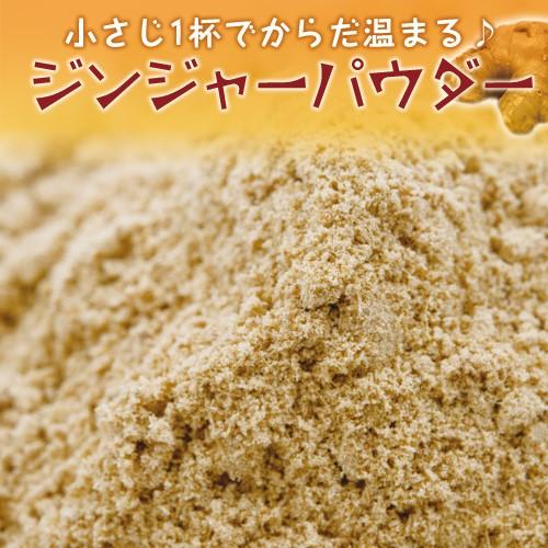 ジンジャーパウダー 50g Ginger Powder 粉末 生姜 しょうが スパイス 調味料 業務用 仕入【ゆうパケット便送料無料】
