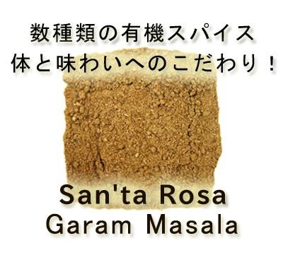 楽天第1位 7種の芳醇ガラムマサラ100g 有機ガラムマサラ使用 安心・安全品質 スパイスハーブ ミックススパイス 送料無料