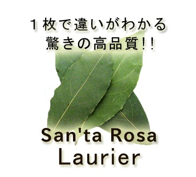 【自然栽培の高品質素材!!】 有機オーガニック素材の無農薬「ローレル ホール 5g」 スパイスハーブ