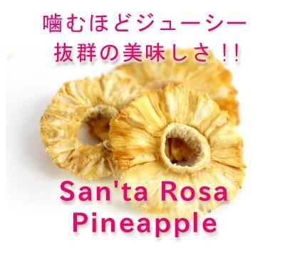 安心・安全品質 純粋ドライパイナップル 80g 農薬不使用 ドライフルーツ ドライパイナップル ドライパイン パインアップル 砂糖不使用