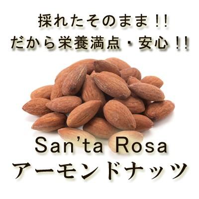 生アーモンドナッツ」100g 有機アーモンドナッツ100%使用 ノンパレル種 アーモンドナッツ スイートアーモンド スーパーフード 無塩 無油