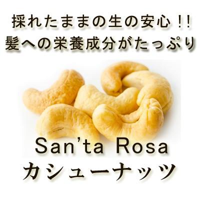 安心・安全品質「生カシューナッツ」100g♪ 大粒カシューナッツ 無塩 無油 無添加 保存食 非常食