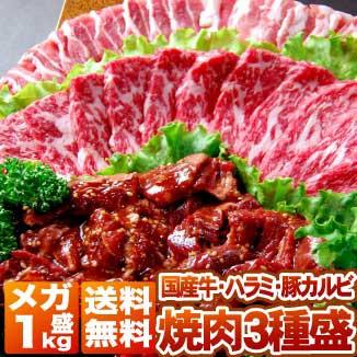 バーべキュー BBQ 焼肉 セット 1kg | 送料無料 | 和牛 牛肉 、 訳あり 牛 ハラミ 、 国産 豚 カルビ ( タレ付 ) 焼き肉 bbq