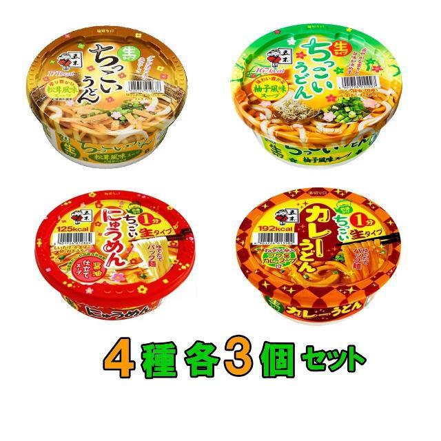 【送料無料(沖縄・離島除く)】五木食品 ちっこいうどんシリーズ 4種各3個セット